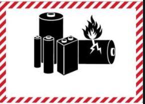 Air-Cargo-Label-Drucker müssen SAP®-kompatibelsein