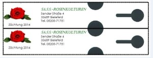Bindeschlaufen-Etikett-farbig