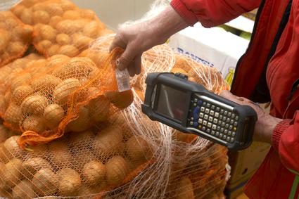 Kartoffeln etikettieren mit Barcodes für den Handel - Fotolia_12793xxx_XS