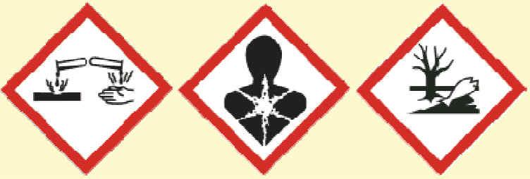 F26C Endloslaser = GHS-Symbole farbig ausgeben